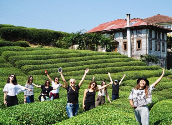 Visit a tea farm in this three day trip from Istanbul to Black Sea region